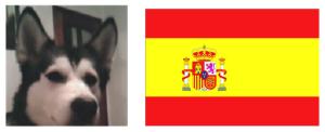 GUGACO - der Gewinner aus Spanien!