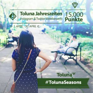 Instagram Toluna Seasons_DE