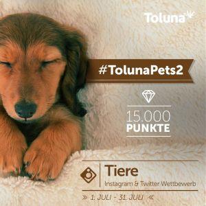 TolunaPets2_DE