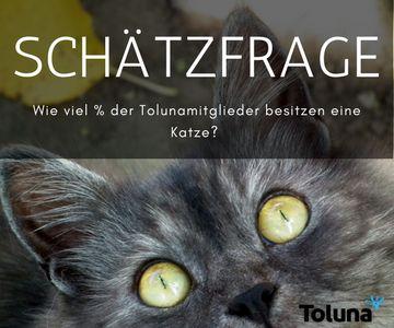 Wie viel % der Tolunamitglieder besitzen eine Katze- BOLD.jpg